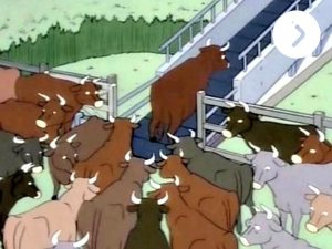 essay-film-essay-video-2013-001-cows-on-conveyor-belt_600x450_1